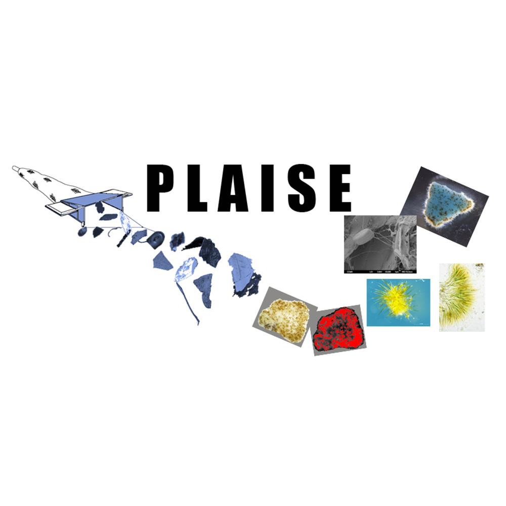 PLAISE